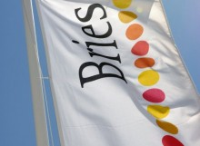 bries_vlag